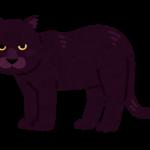 【動物占い】感情豊かな黒ヒョウ(レッド)の性格や相性について
