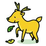 【動物占い】強い意志を持ったコジカ(ゴールド)の性格や相性について