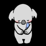 【動物占い】サービス精神旺盛なコアラ(ブラウン)の性格や相性について
