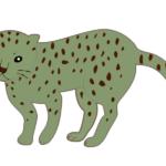 【動物占い】足腰の強いチーター(グリーン)の性格や相性について