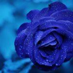 【オーラ診断・鑑定】青色のオーラを持つ人の特徴と見分け方