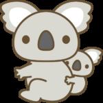 【動物占い】コアラタイプの特徴・性格・運勢・相性