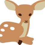 【動物占い】こじかタイプの特徴・性格・運勢・相性